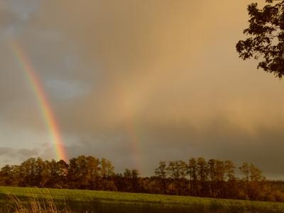 Regenbogen in Brandenburg